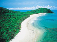 Cape Tribulation Package